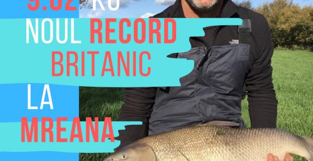 mreana record in UK