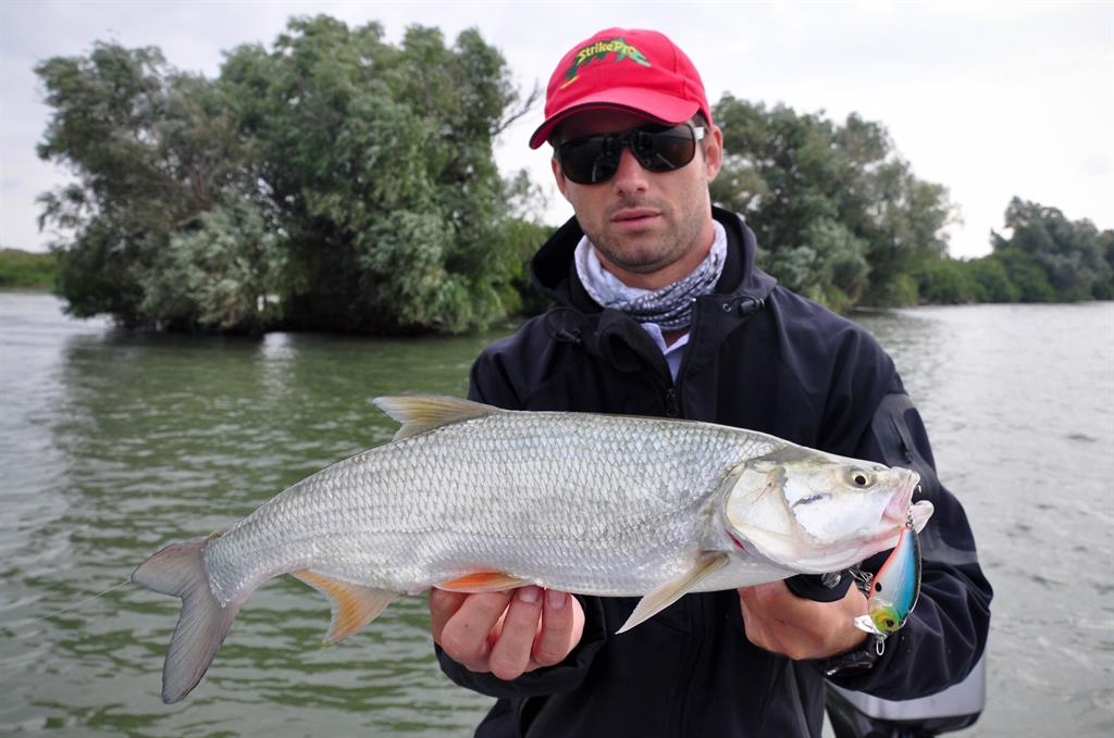 pescuit la avat