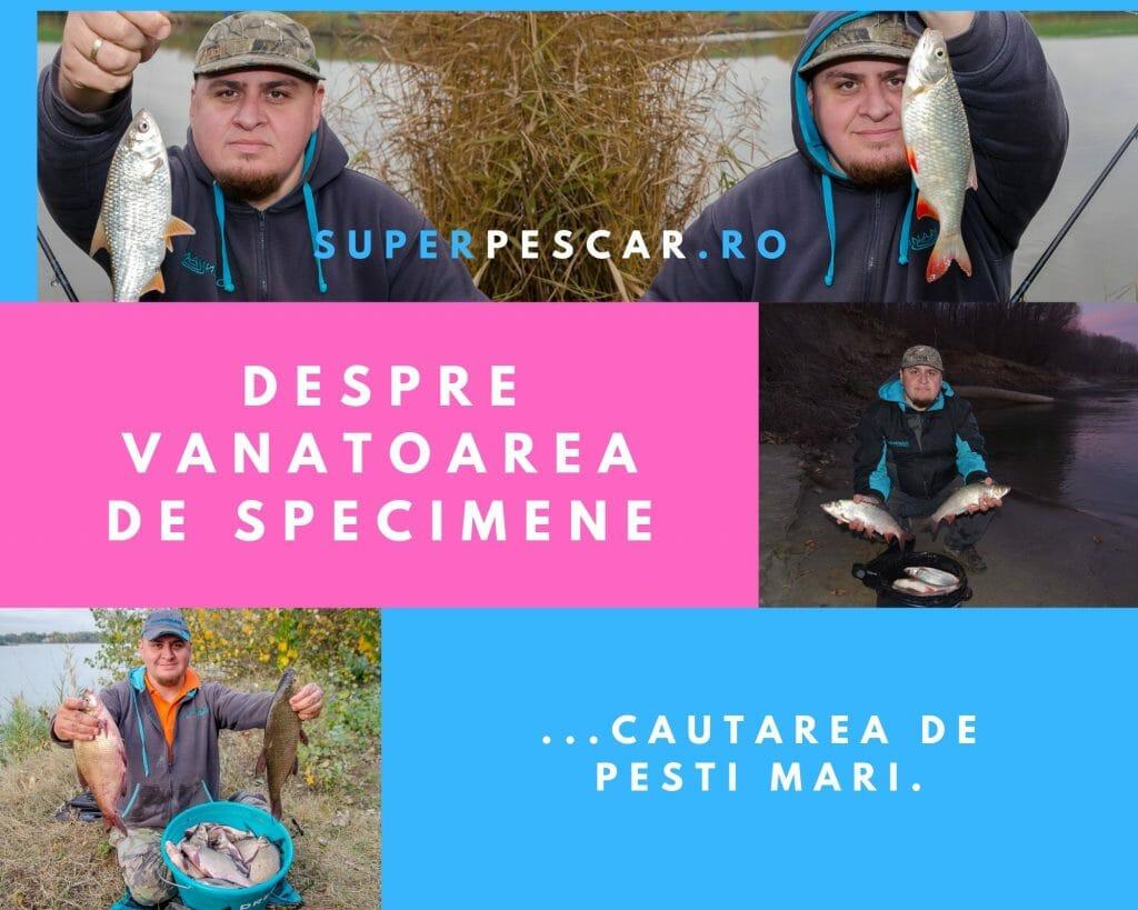 Pescuit de specimene -după pești mari 7